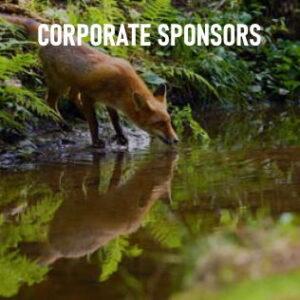 corporarte sponsors