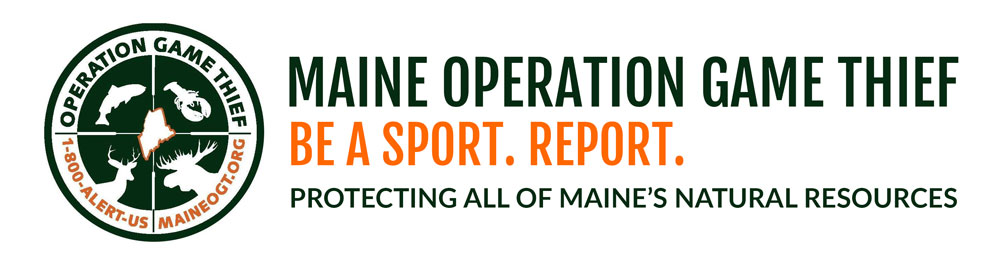 operation_game_logo_green