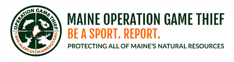 Maine Operation Game Thief